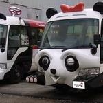 Panda bus1